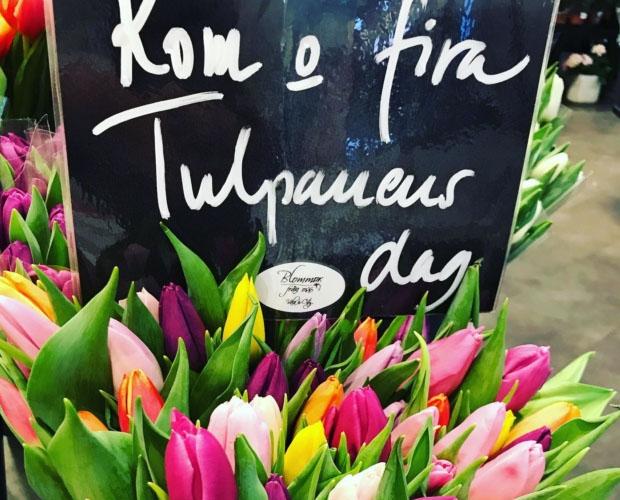 Blommor från oss